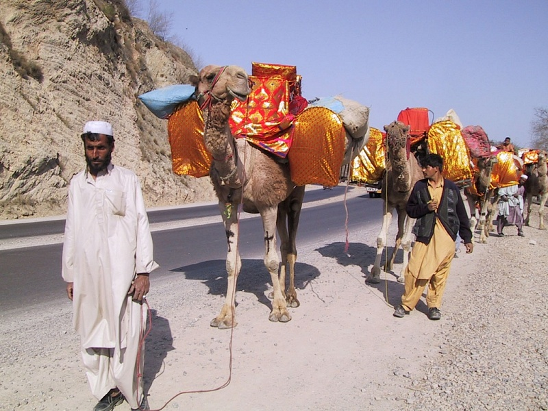 marriage caravan with dowry in Khyber Pass